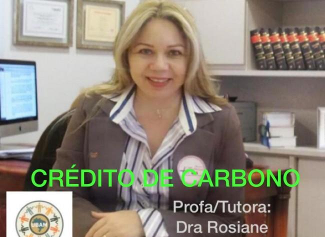 O Mercado de Crédito de Carbono
