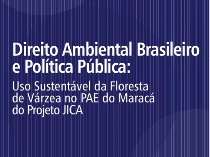 DIREITO AMBIENTAL BRASILEIRO E POLITICAS PUBLICAS